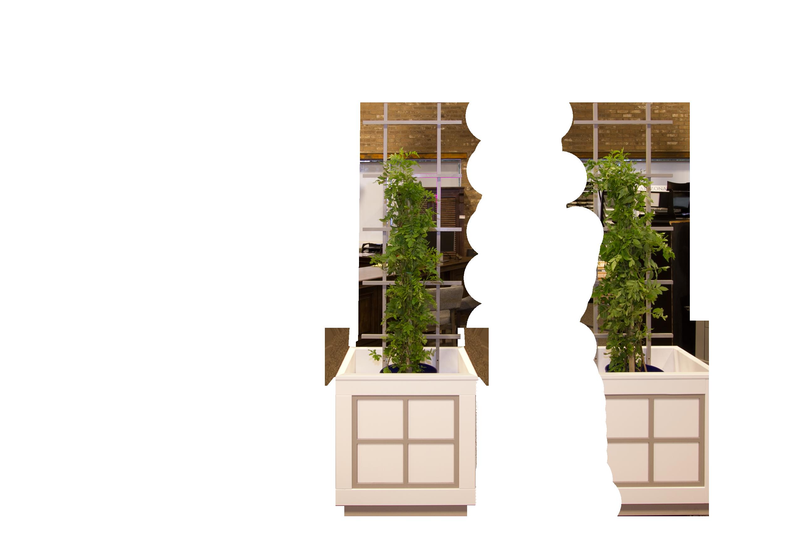 Lattice-Planter-Box-2-ft