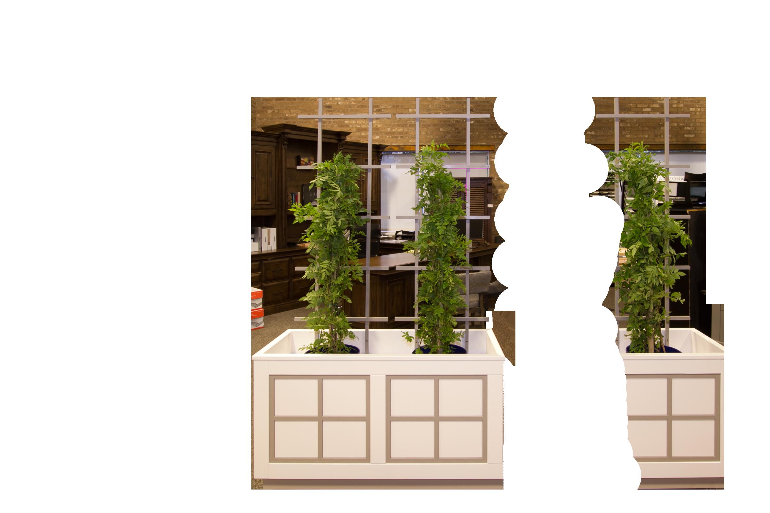 Lattice-Planter-Box-4-ft