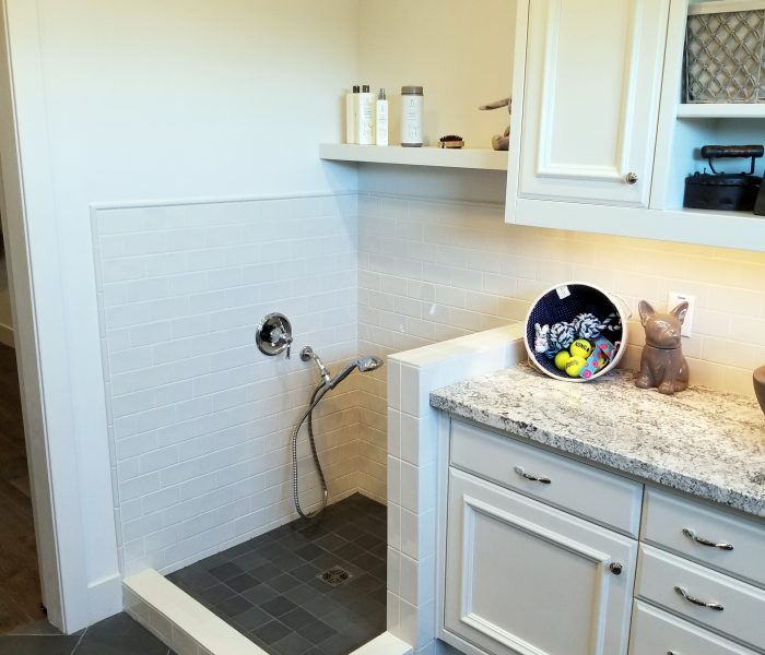 transitional laundry room with dog washing corner